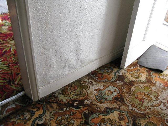 Wall Damp Due To High Outside Ground